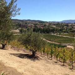 Photo taken at Cougar Vineyard & Winery by Becky on 10/6/2013