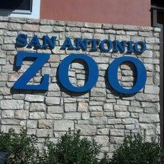 Photo taken at San Antonio Zoo by Michele B. on 11/17/2012