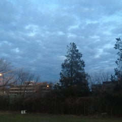Photo taken at Stamford Dog Park by Alexandra on 3/29/2013