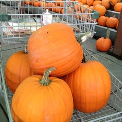 Photo taken at Your Independent Grocer by Mark K. on 10/19/2012