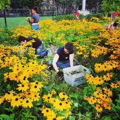 Photo taken at Lower East Side Ecology Center Garden by Joshua W. on 8/29/2013