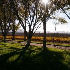 Photo taken at Bridlewood Estate Winery by David T. on 11/25/2012