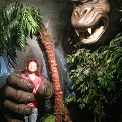 Photo taken at Museum Of The Weird by Sixmarie M. on 9/7/2013