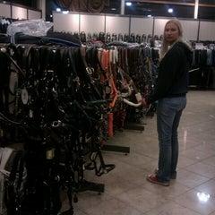 Photo taken at Divoza Horseworld by Felix J. on 10/5/2012