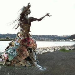 Photo taken at Albany Waterfront Trail by David W. on 12/13/2012