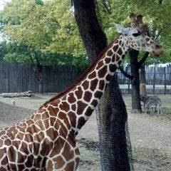Photo taken at Great Plains Zoo by Dan H. on 9/18/2012