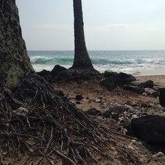 Photo taken at La'Aloa Bay Beach (White Sands Beach Park) by Guillaume W. on 4/18/2015