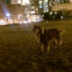 Photo taken at Dog Park by Todd T. on 12/7/2014