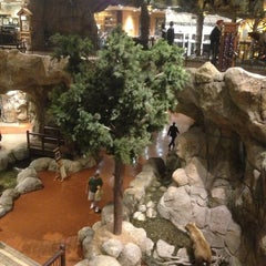 Photo taken at Bass Pro Shops by Adam S. on 1/10/2013