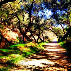 Photo taken at Claremont Five Mile Loop Wilderness Trail by Kristine on 2/8/2013