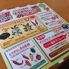 Photo taken at サイゼリヤ 大船松竹S.C店 by Takashi on 6/30/2013