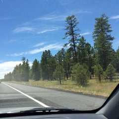 Photo taken at Coconino National Forest by Melissa D. on 7/8/2014