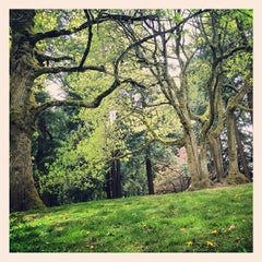 Photo taken at Mt. Tabor Park by Alissa C. on 4/27/2013