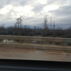 Photo taken at Coldwater River Bridge by Alison P. on 2/12/2013