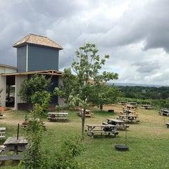 Photo taken at Barrel Oak Winery by Ashley R. on 7/1/2013