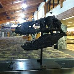 Photo taken at Bozeman Yellowstone International Airport (BZN) by Jenni O. on 1/26/2013