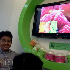 Photo taken at Tutti Frutti Frozen Yogurt by Salbiah N. on 6/9/2013