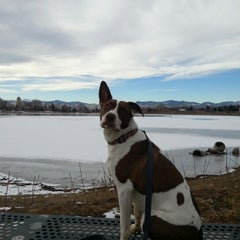 Photo taken at Berkeley Park by Qualtime on 12/21/2012