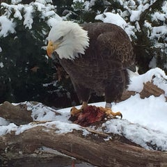 Photo taken at National Aviary by Nick K. on 2/15/2014