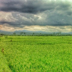 Photo taken at Kutoarjo by ekoSusilo e. on 7/30/2014