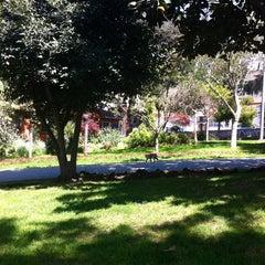 Photo taken at Doğancılar Parkı by Candan .. on 4/28/2013