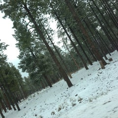 Photo taken at Coconino National Forest by Edwin D. on 4/9/2013