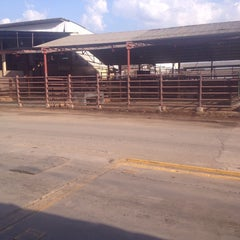 Photo taken at Matadero Industrial Centro Occidental, C.A. by Fabian R. on 2/3/2015