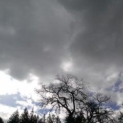 Photo taken at Camas Valley by Mysi on 4/3/2015