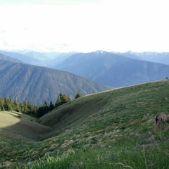 Photo taken at Olympic National Park by Ezechel T. on 5/25/2015