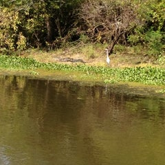 Photo taken at Henderson Swamp by Ron M. on 10/8/2012