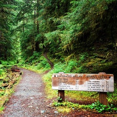 Photo taken at Olympic National Park by twobillionideas on 5/27/2013
