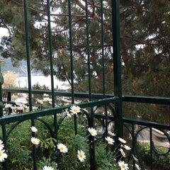 Photo taken at La Villa Degli Argentieri by ALEV A. on 5/1/2014