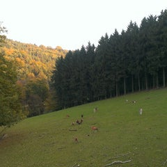 Photo taken at Naturpark Sparbach by philipp on 10/12/2014