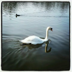 Photo taken at Leazes Park by MaryKathleen G. on 3/5/2013