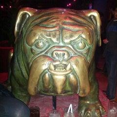 Photo taken at Bulldog Café by Edson R. on 7/14/2012