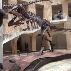 Photo taken at Fernbank Museum of Natural History by Corey G. on 5/25/2013