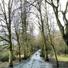 Photo taken at Hampstead Heath by Jonathan C. on 3/16/2013