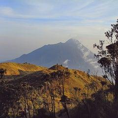 Photo taken at Taman Nasional Gunung Merbabu by Sangaji B. on 10/16/2014
