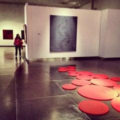 Photo taken at Museo  Nacional de Bellas Artes by Diego S. on 9/4/2013