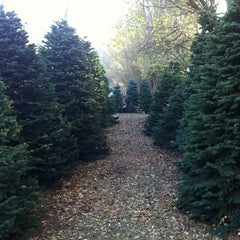 Photo taken at Clancy's Christmas Trees by Gabrielle E. on 11/30/2013