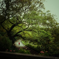 Photo taken at The Cloisters by Pamela C. on 10/10/2012