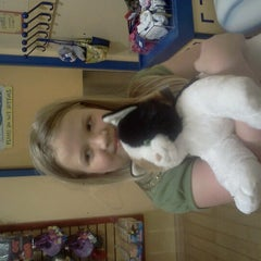 Photo taken at Build-A-Bear Workshop by Christina D. on 7/15/2012