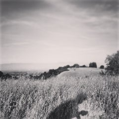Photo taken at Fremont Older Open Space Preserve by Naoto S. on 4/13/2013