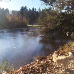 Photo taken at Charleson Park by Chels A. on 11/28/2015