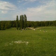 Photo taken at Parc départemental de Lacroix-Laval by Etienne G. on 5/5/2013