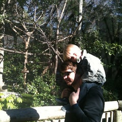 Photo taken at Monkeys Of The Zoo by Crystal V. on 1/2/2012