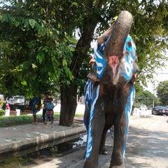 Photo taken at ศาลจังหวัดอยุธยา (Ayutthaya Provincial Court) by วารินทร์ ส. on 4/14/2012