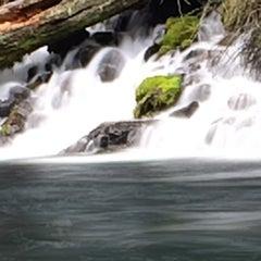 Photo taken at Wizard Falls Fish Hatchery by Jeff H. on 4/3/2014