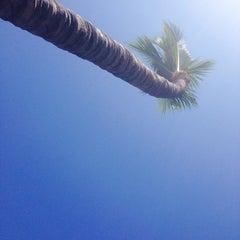 Photo taken at Olas Altas Hotel Surf by Brrowneyedgirl on 1/2/2014
