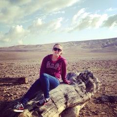 Photo taken at Kfar Hanokdim by Naomi B. on 3/10/2014
